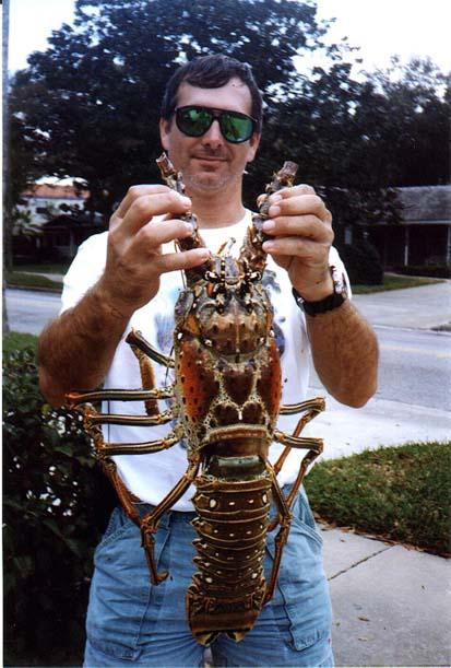 Richard Daniel's Big Gulf Bug - Click to enlarge
