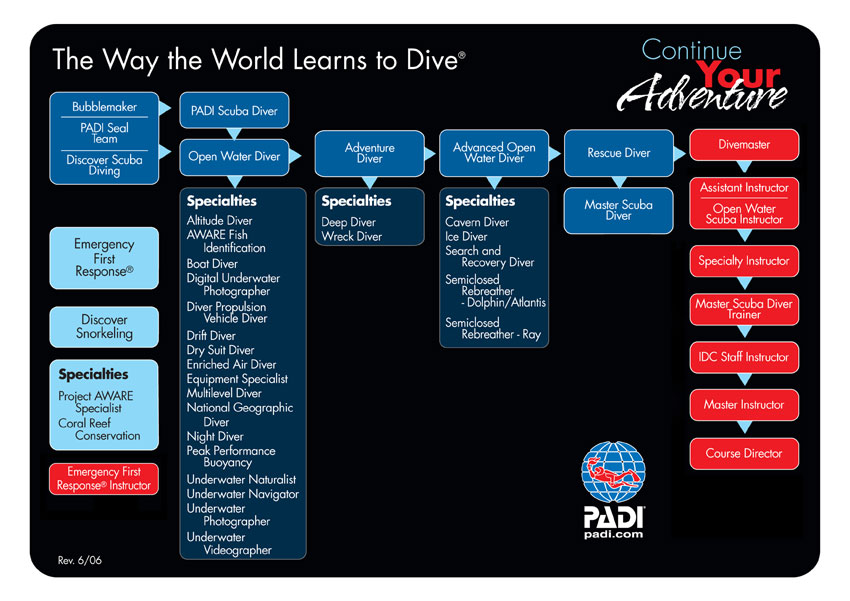 Padi Divemaster Diver Courses Lessons And Classes Tampa Florida Fl